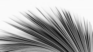 pages-flip